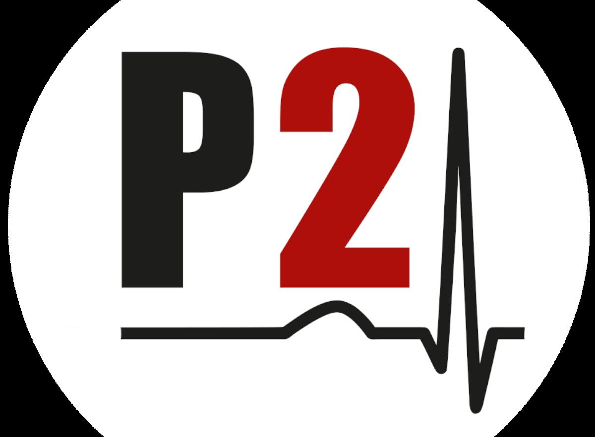 PULS 2.0